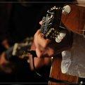 concert au Fest Jazz avec Remi Harris, Caley Groves et Simon Buffaud (juillet 2015)